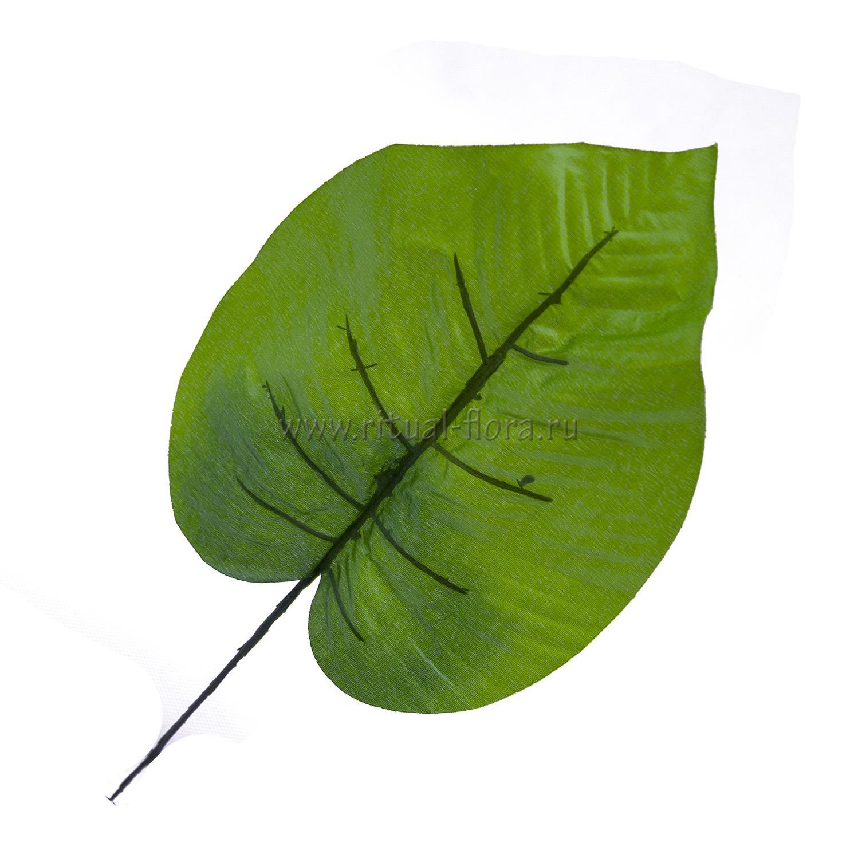 Лист фикуса (20шт)
