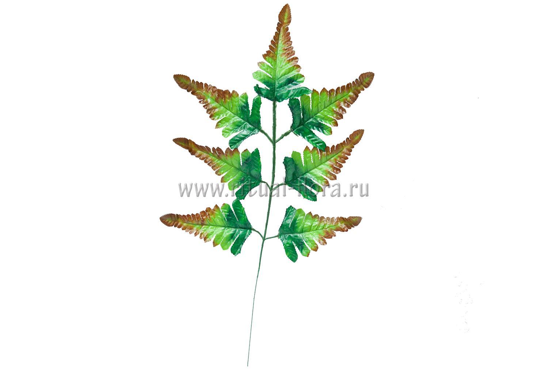 Лист папоротника 7л 50 см