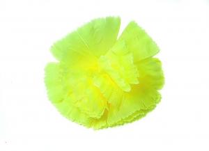 Гвоздика 700 желтая (1/100)