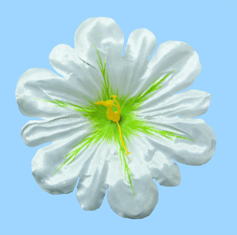 Клематис атлас d-11 cм белый(100 шт)