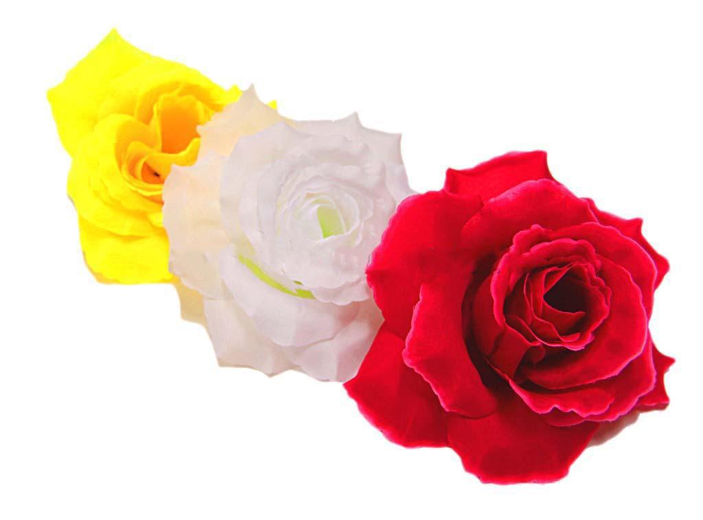 Роза Красота Г0320 белая (1/20)