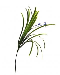 Ветка травка с цвет.