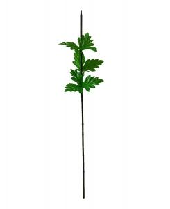 Ножка хризантемы с листом 70 см